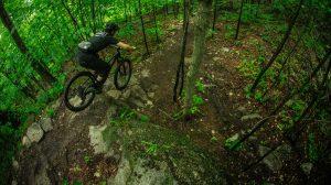 2020-Devinci-Django-29-Mountain-Bike-Action-1