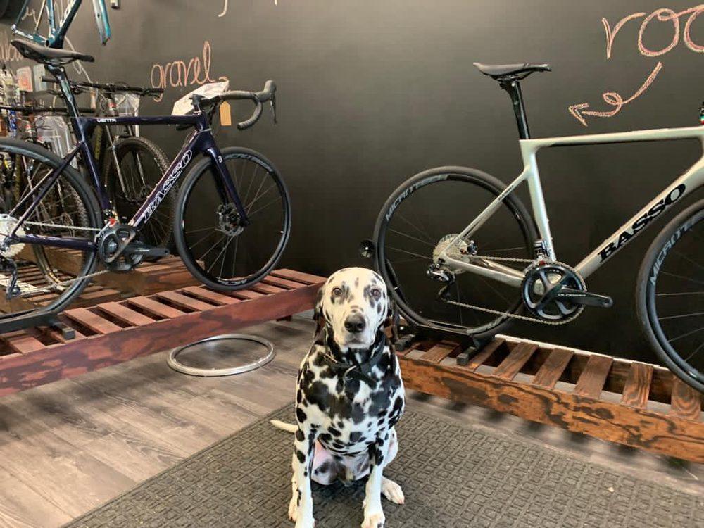 Collareta-Cycling-Bike-Shop-Plantation-FL-basso-bikes-2